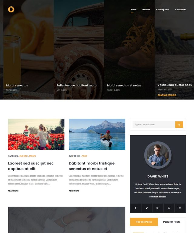 Dot Blog Pro