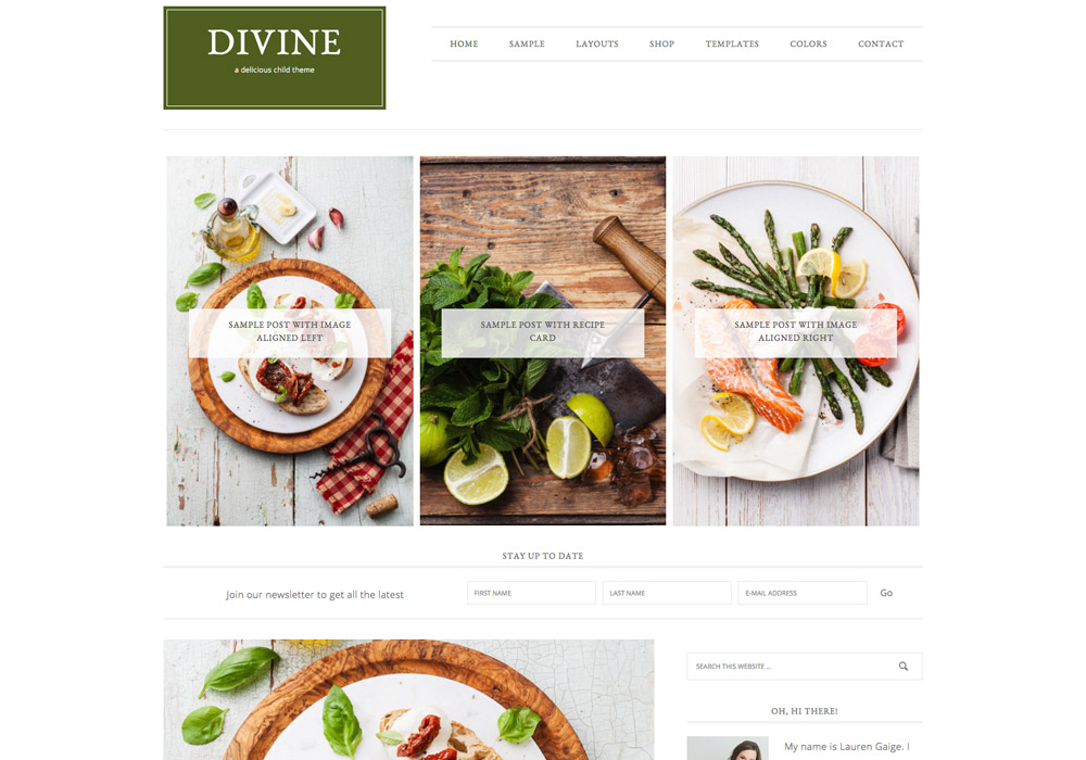 divine_food_wordpress_theme