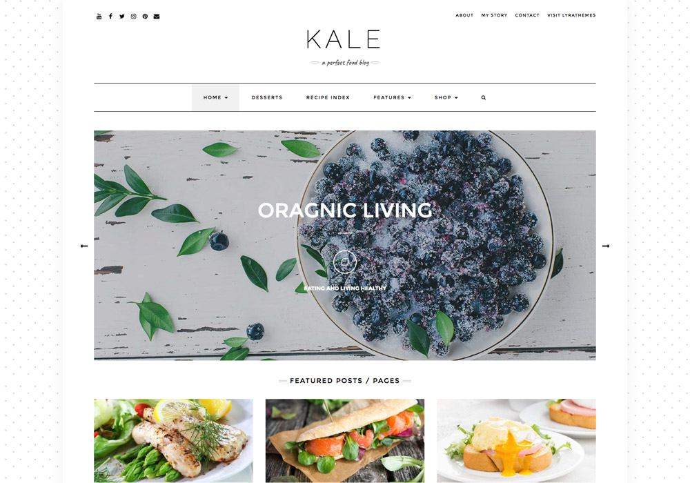 kale_food_wordpress_theme