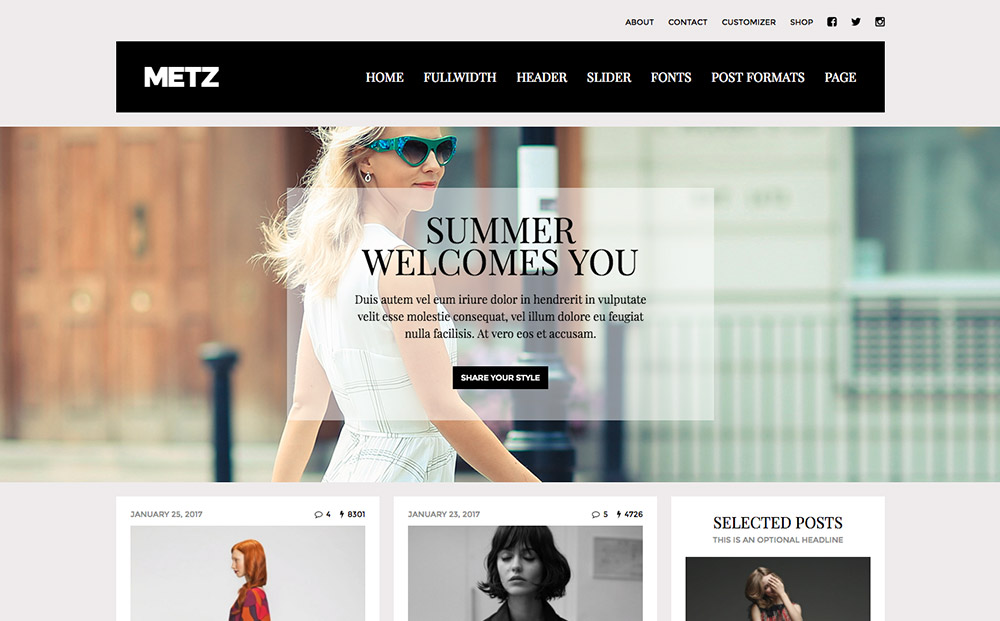 WordPress fashion themes